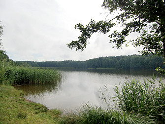 Bauersee